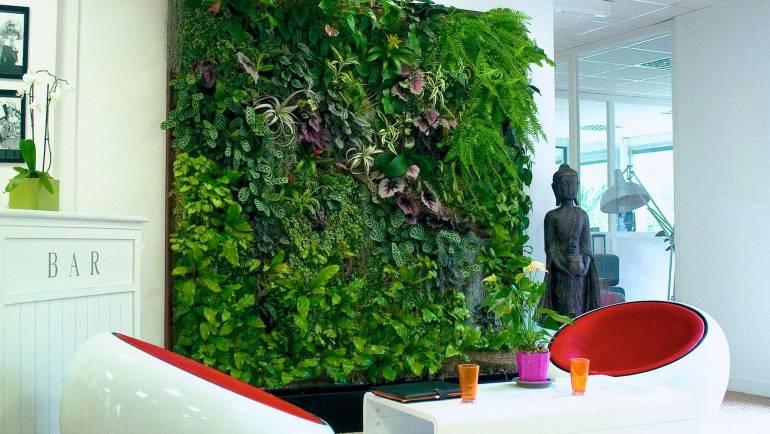 Quel est l'intérêt d'un mur végétal intérieur ?