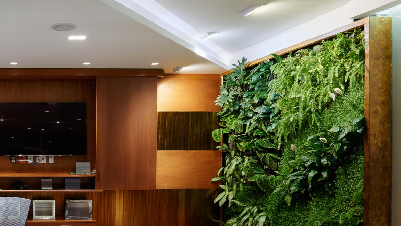Mur végétal naturel ou stabilisé