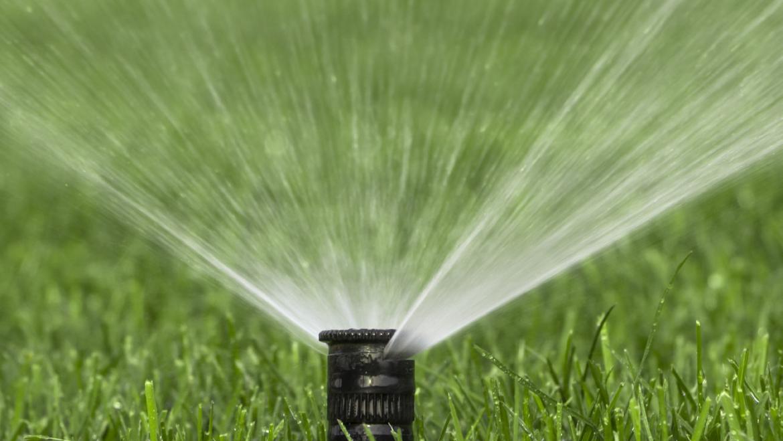 Système d'irrigation automatique